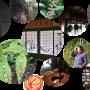 2017/9月 岩橋由莉 朗読ワークショップ合宿 「 読めし!聴けし!おもしろシ!」